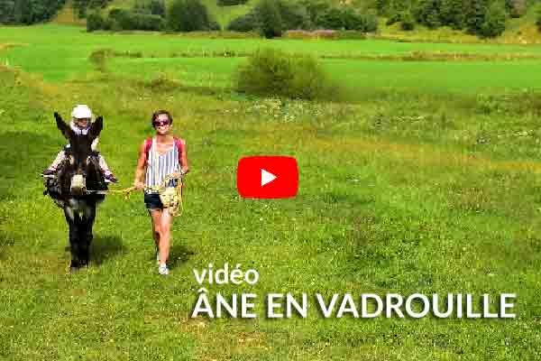 video ane en vadrouille