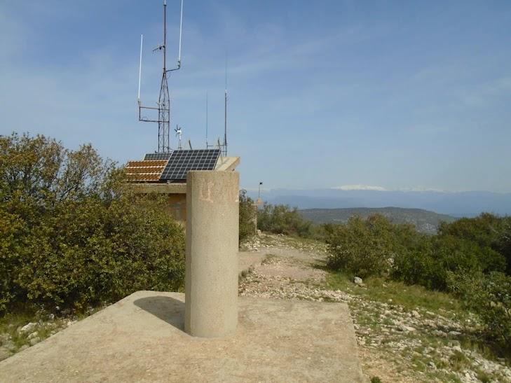 Pico Buñero