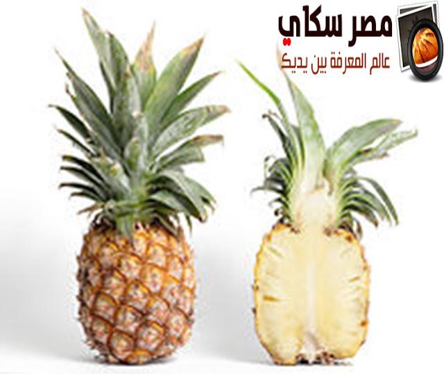 تعرف على رجيم الأناناس وكيف يساعد على إنقاص الوزن Pineapple ؟