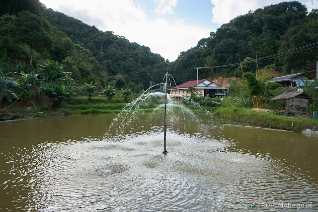 A fountain nearby the Saleuy Waterfall, Laos