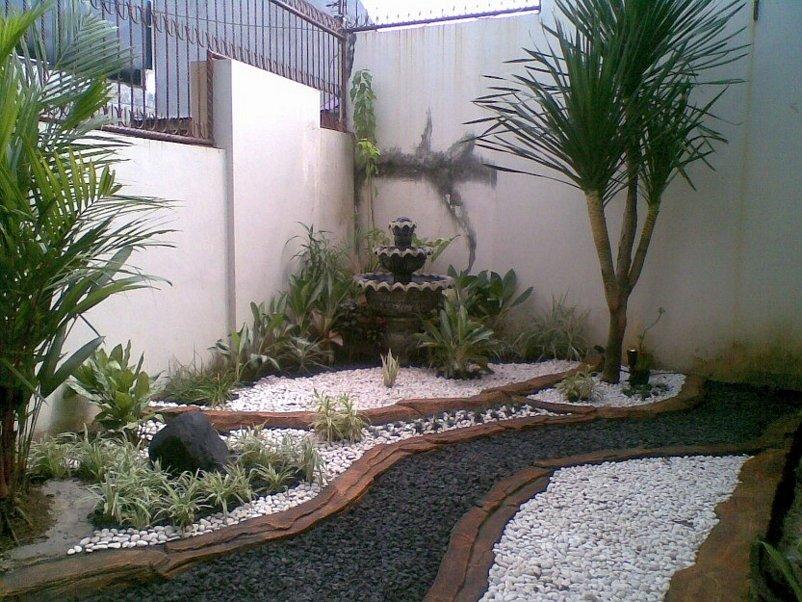 taman minimalis belakang rumah terlihat modern