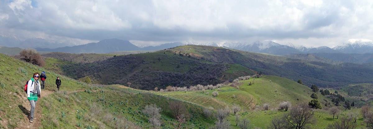 DSC03516 Panorama