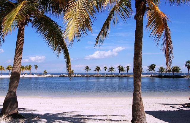O que fazer no inverno em Miami