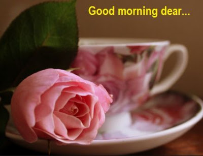 good morning pink rose images download