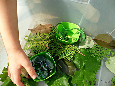 Sorting in the green sensory bin from And Next Comes L