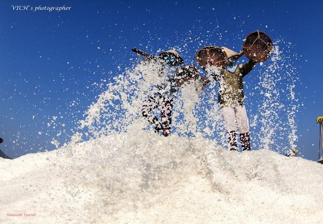The salt fields near Van Phong Bay, Khanh Hoa province 14