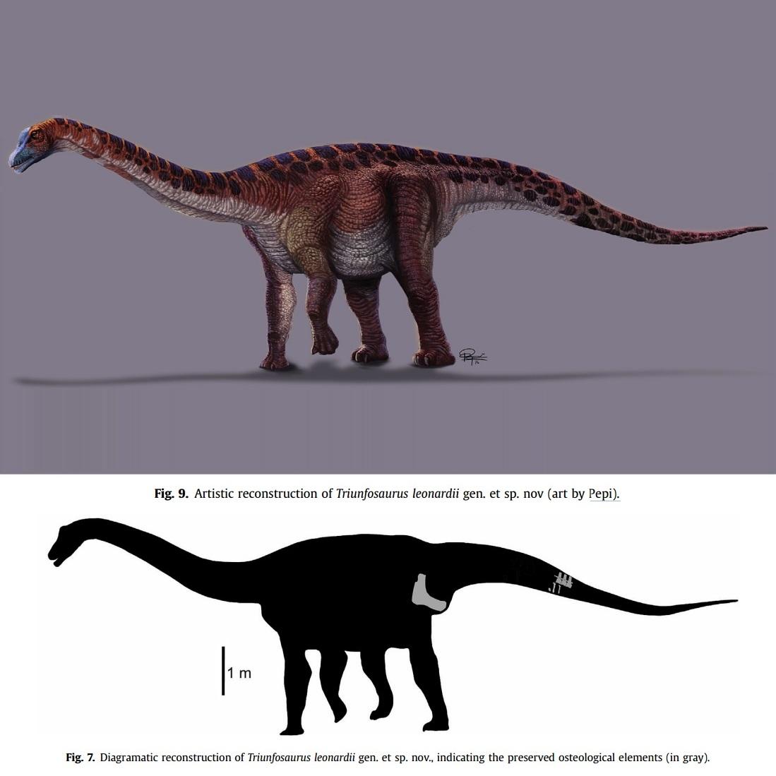 Paleo discoveries of 2017. Triunfosaurus_leonardii-novataxa_2017-Carvalho-Salgado-Lindoso-Ara%25C3%25BAjo-J%25C3%25BAnior-Nogueira-et-Soares_paleoArt_Pepi