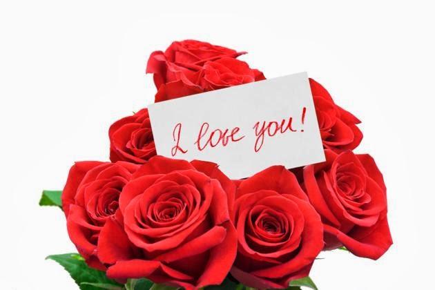 Gambar Bunga Valentine Mawar Merah Valentines Day