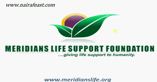 How to Partner With Meridians Life Support Foundation (Melisfon)