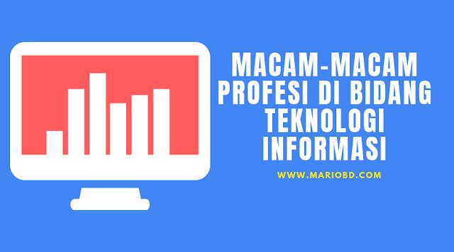 Macam-Macam Profesi Di Bidang Teknologi Informasi - Mario Bd