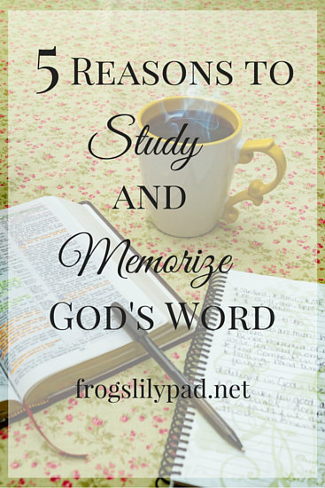 5 Reasons to Study and Memorize God's Word - Spending time in the Bible is IMPORTANT for any Christian. When we don't, we miss out on special talks with God. frogslilypad.net