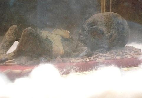 penampakan hantu tuyul bentuk fisik yang diambil dari dukun