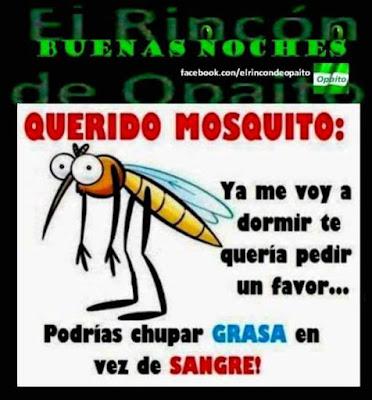 Querido mosquito, ya me voy a dormir, quisiera pedirte un favor, en vez de chupar sangre, chupa grasa