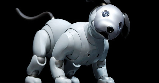 Sony Launches New Aibo Robot Dog