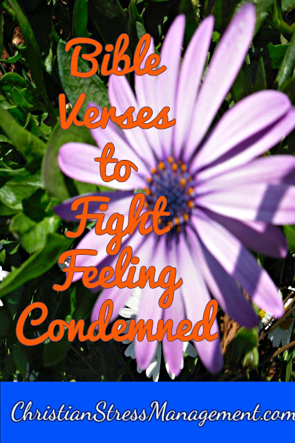 Bible verses to fight feeling condemned and condemnation