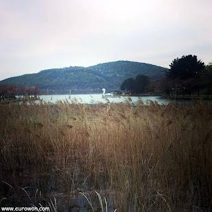 Barco con forma de pato en el lago Bomunho de Gyeongju