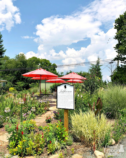 Jefferson Vineyards in Charlottesville has several beautiful outdoor spaces on the winery's property, so be sure to grab a glass (or a bottle) & head outside to enjoy the impressive views of the Virginia foothills.