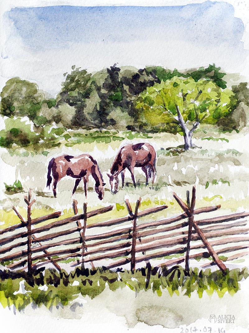 aliciasivert alicia sivert sivertsson akvarell aquarelle watercolour watercolor water color colour vattenfärg friluftsmåleri måla målning målningar konst paint painting art paintings gotland gärdsgård hage hästhage häst hästar