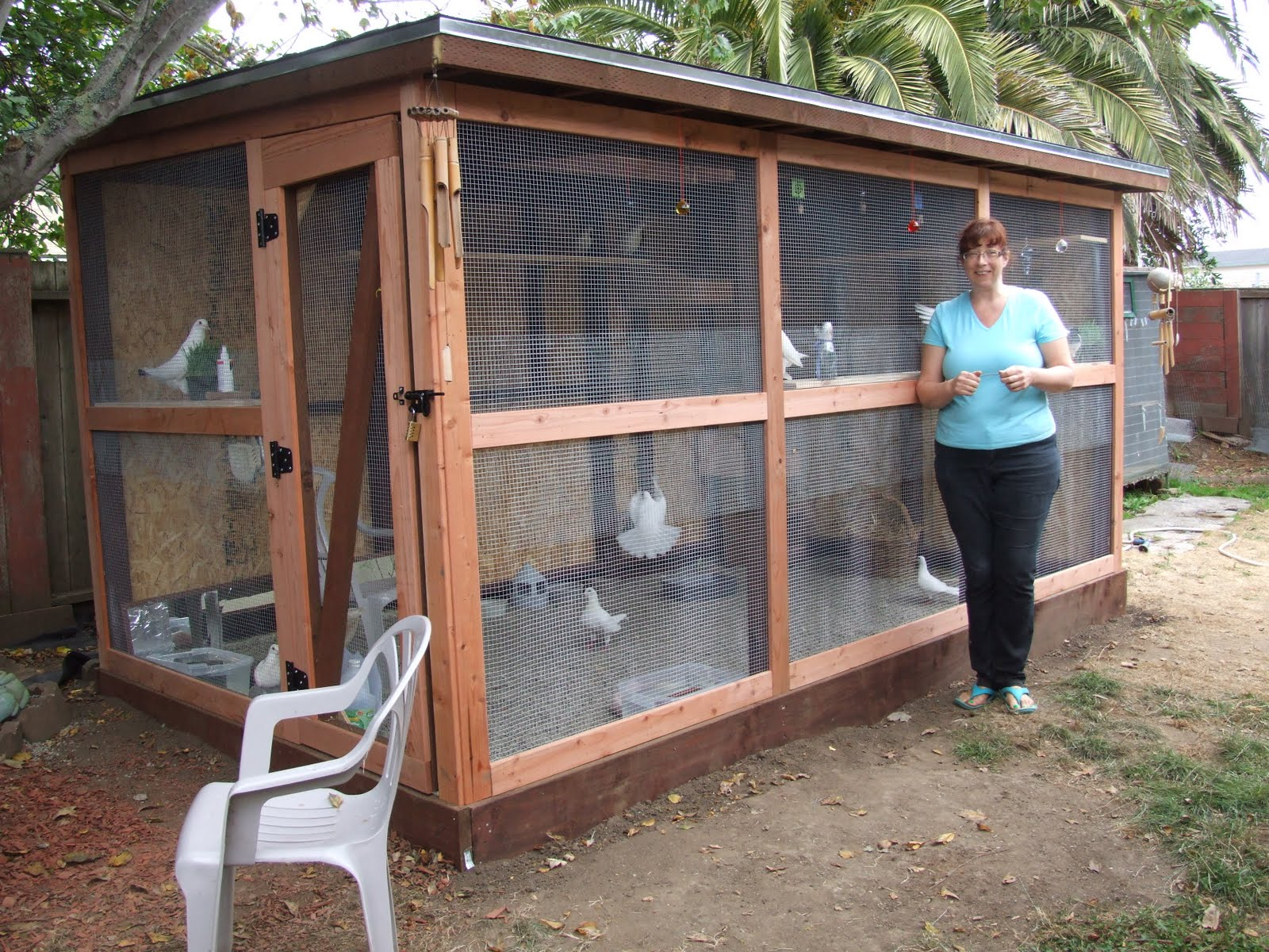 The Rescue Report How To Create An Aviary For Rescued