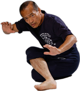 dan inosanto on silat tom furman fitness