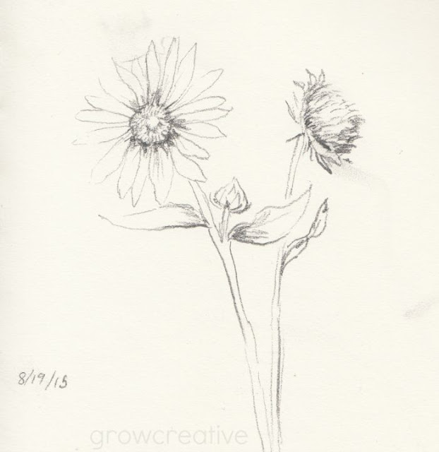 sunflower sketch:grow creative