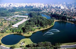 Floresta Urbana São Paulo