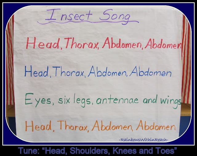 photo of: Insect Song (Piggy Back) on Handwritten Anchor Chart