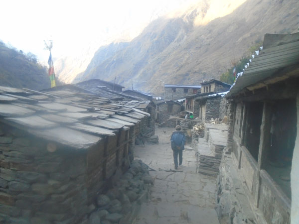 Manaslu tea house trek agency Nepal.