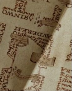 Newt Scamander apareció en una de las películas de Harry Potter