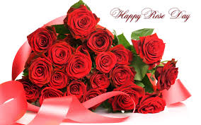 Rose day messages greetings images wishes