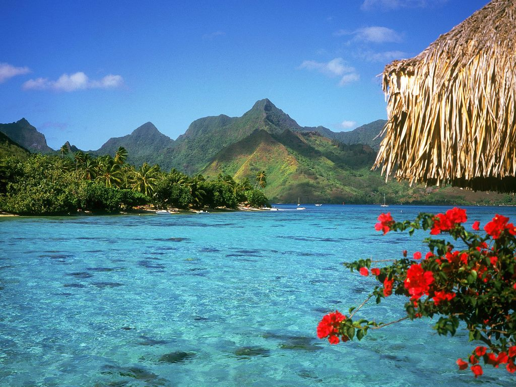 Bora Bora | French Polynesia Nice View | Travel And Tourism