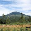 Gunung Cikuray Info Lengkap Simaksi Tiket Masuk Dan Jalur Pendakian