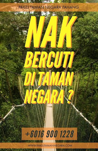 taman negara, national park, taman negara malaysia, taman negara pahang, pakej taman negara,