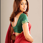 15 Latest Photos of Richa Gangopadhyay
