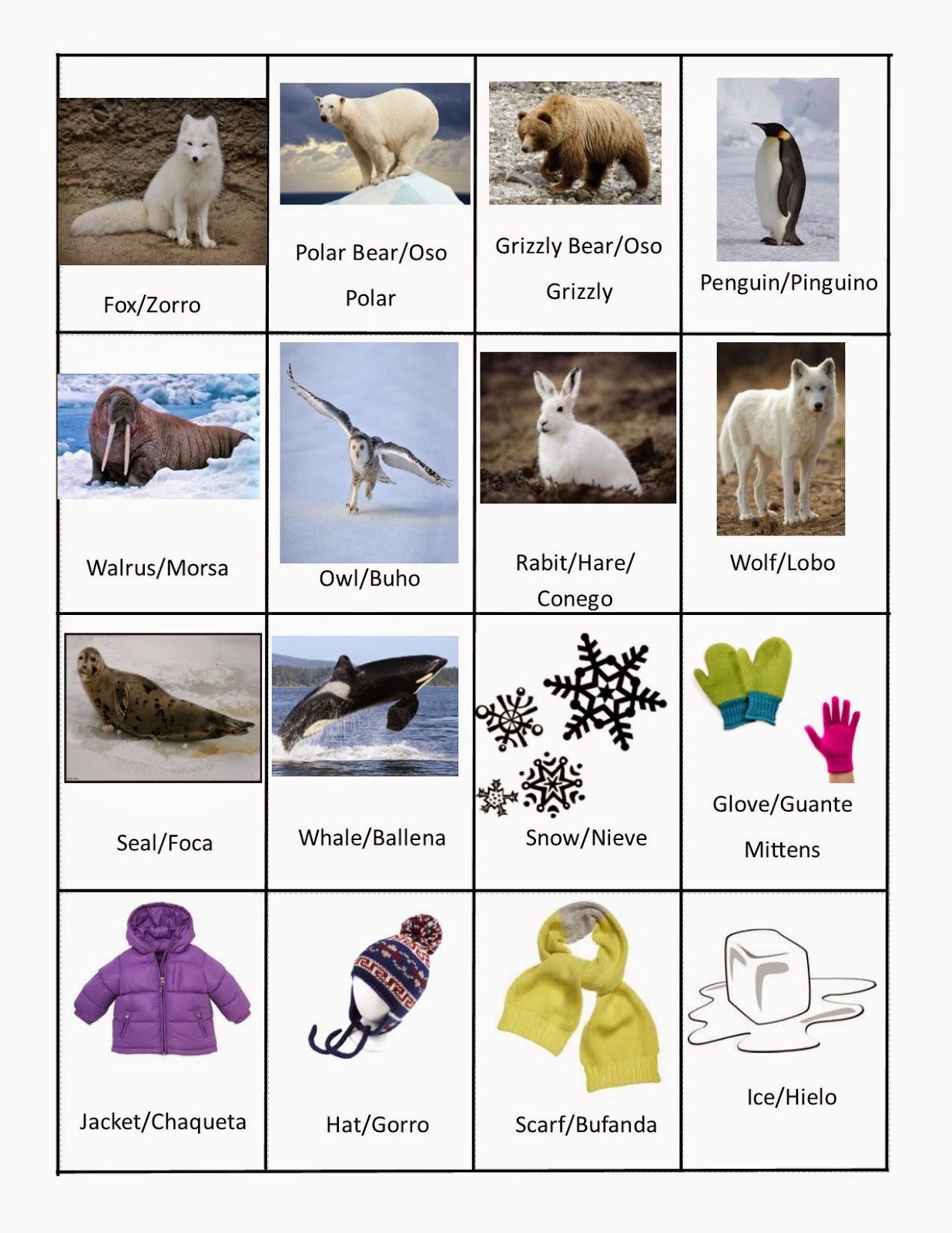 Speech Languagetherapysessions January Vocabulary Words