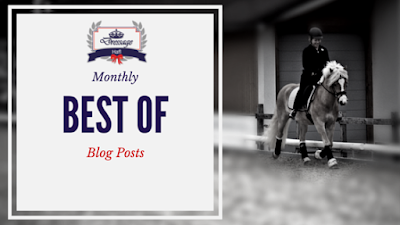 Monthly Round-Up: What You Should Not Have Missed On Dressage Hafl In August 2016