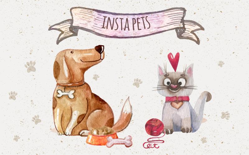 Pets para seguir no instagram