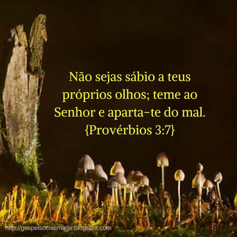 Imagem com versículo de boa noite gospel - Provérbios 3.7