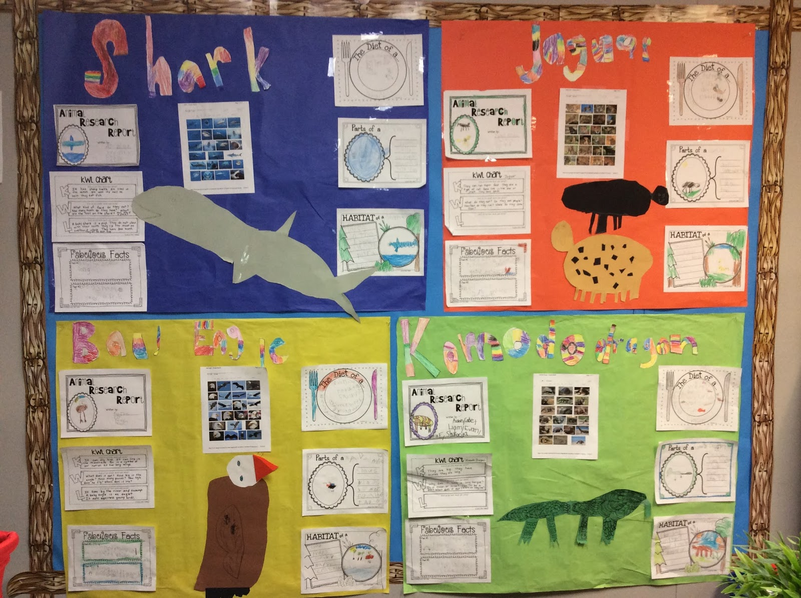 Kinderworld Bulletin Boards