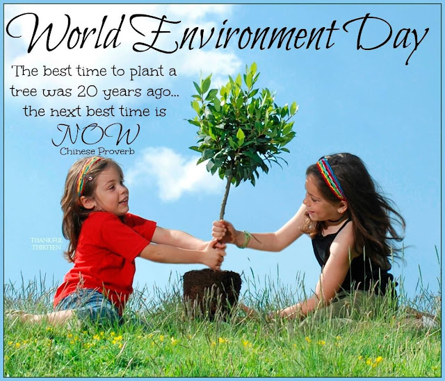World Environment Day poster 2017