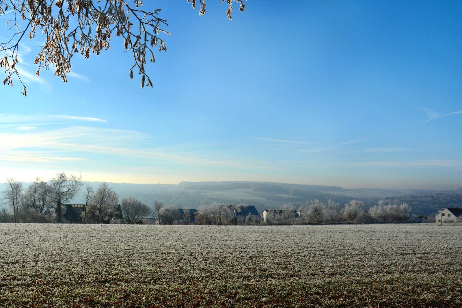 View of Ulm from Eselsberg with a blue sky