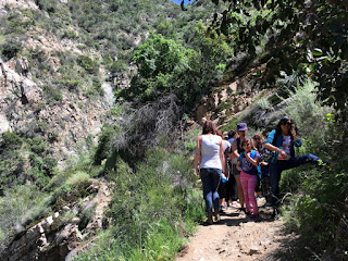 Traffic along Fish Canyon Trail, Angeles National Forest