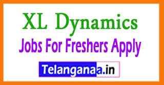 XL Dynamics Recruitment Jobs For Freshers Apply