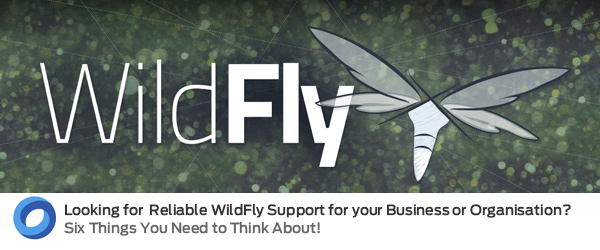 Expert WildFly Support from the UK's Leading Middleware experts