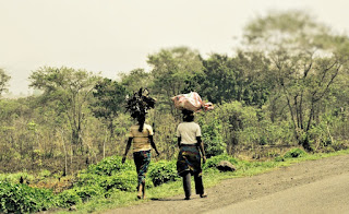 Carrying firewood home in Cameroon