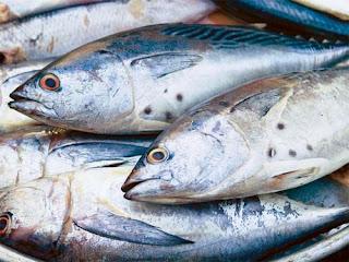 Cách nhận biết cá có bị nhiễm độc hay không