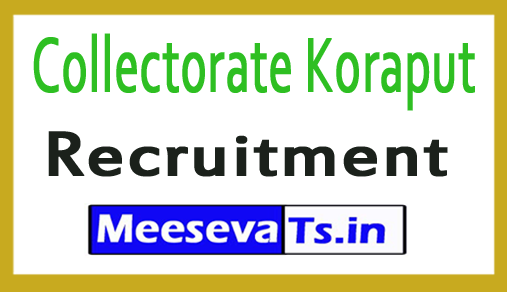 Collectorate Koraput Recruitment