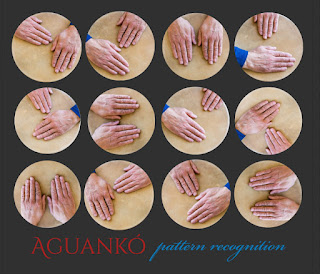 Aguanko Pattern Recognition / stereojazz