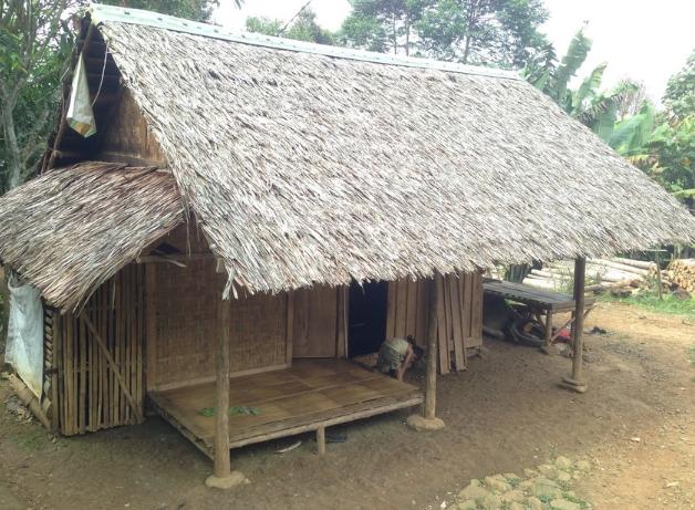 Daun Kelapa Bisa Dijadikan Atap Rumah