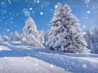 Cara Menambahkan Animasi Salju pada Video dengan Adobe After Effect CS4
